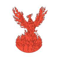 Phoenix Rising Fiery Flames Drawing