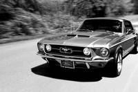 1967 Ford Mustang B/W