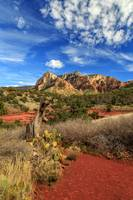 Red Dirt And Cactus In Sedona