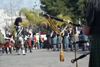 pipers on parade