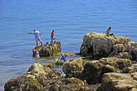 Fishing from the Rocks, Seaview