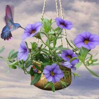 Hanging Flowers and Hummingbird by I.M. Spadecaller