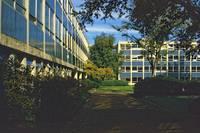 1984-5 UBC Campus 29 by Priscilla Turner