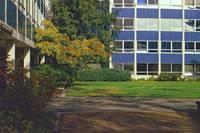 1984-5 UBC Campus 33 by Priscilla Turner