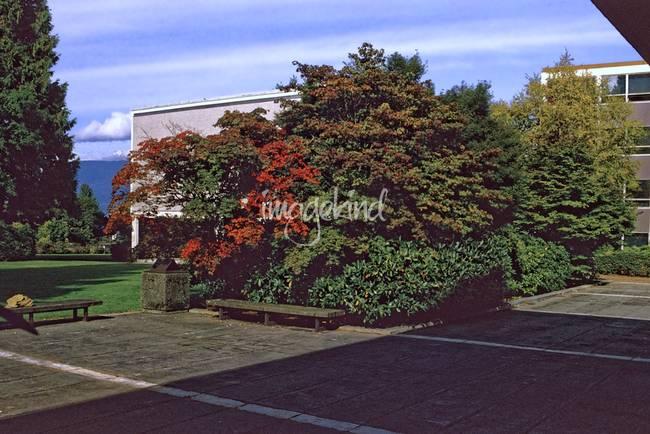 1984-5 UBC Campus 26