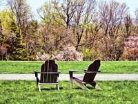 Adirondack Chairs in Spring