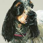 """Cocker Spaniel"" by BrettHudsonArt"