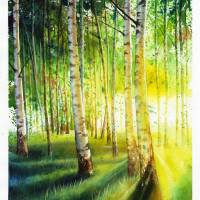 white-birch-1757345 XL by ArtLoversOnline