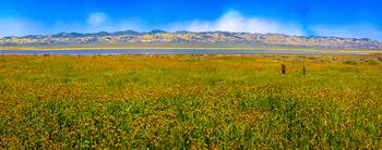 Soda Lake Panorama