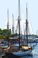 Docked Masts by Kirt Tisdale