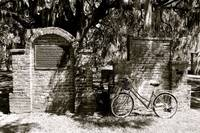 Cycle in the Cemetery #2_B&W