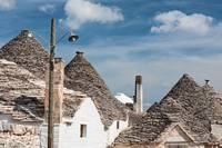 Typical rooftops of Alberobello houses