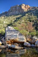 Landslide At Sabino Canyon