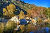 Sabino Canyon Reflecting Pool Fall Colors Hdr