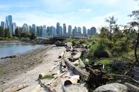 Stanley Park waterfront before Vancouver