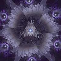 Amazing Fractal Triskelion Purple Passion Flower