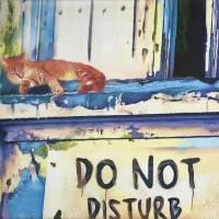 biotcat Art Prints & Posters by MD JO