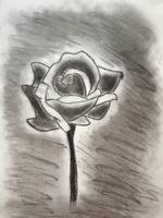 flower drawn with charcoal.