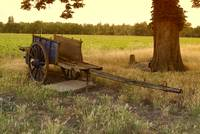 Old wagon in the field