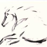 Wild Horses Art Prints & Posters by Donna Bernstein