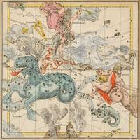 Vintage Celestial & Astrological Map  (1693)