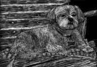Scratchboard Dog on a Porch Swing