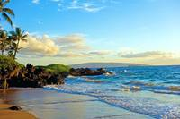 Makena Surf Beach Study 1
