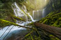 Panther Creek Falls in Oregon by Cody York_2551