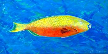 PARROT FISH- YELLOW-ORANGE