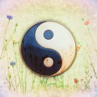 Yin Yang - Meadow Moon I