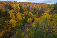 Cut River Valley in Fall, Michigan