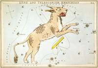 Sidney_Hall_-_Urania's_Mirror_- Lynx and Telescopi