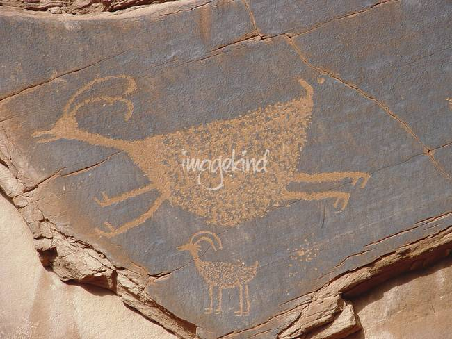 Bighorn Sheep Petroglyph, Monument Valley