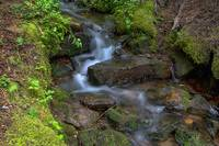 Green Flowing Stream