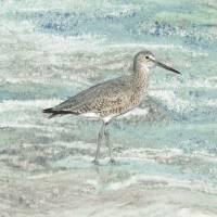 Solitary Shorebird by I.M. Spadecaller