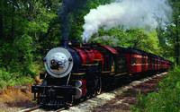 Summer Steam Locomotive Train