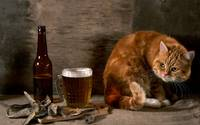 Kitty Plans On Sneaking A Sip Of Beer