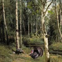 Wild Turkeys in Birch Tree Forest by I.M. Spadecaller