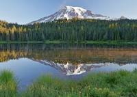 Mount Rainier above a misty Reflection Lake at sun