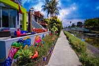 The Colorful Side of the Canal