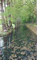 Waterway at Chenonceau 2