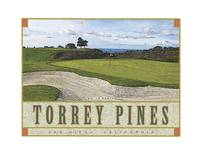 Torrey Pines North #12