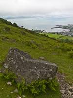 Leprechaun Rock, Carlingford by Michael Stephen Wills