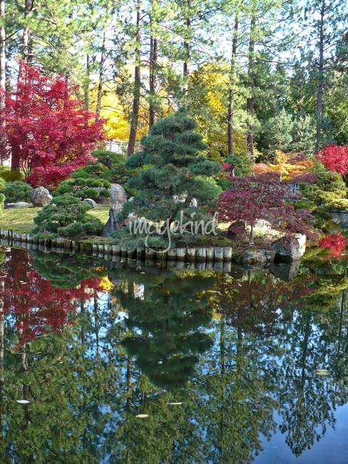 Autumn Wonderland HDR