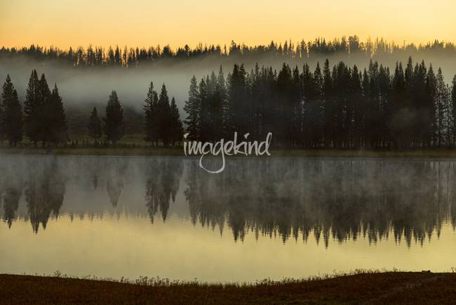 Early Morning Foggy Reflections