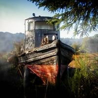 Old Boat in Field