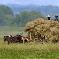 Amish Hay Lift by Roger Dullinger