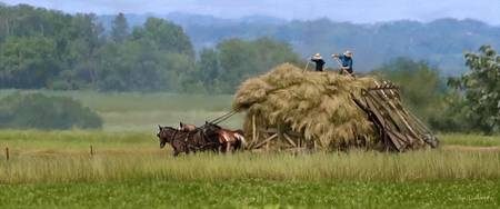 Amish Hay Lift