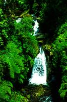 Green Waterfall