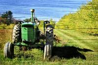 Autumn Deere with Wood Grain